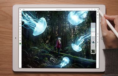 Adobe Photoshop CC voor iPad