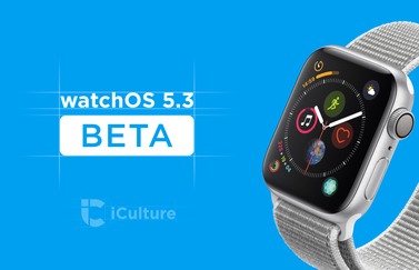 watchOS 5.3 beta.