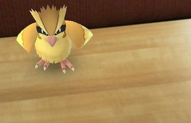 Pidgey in Pokémon Go