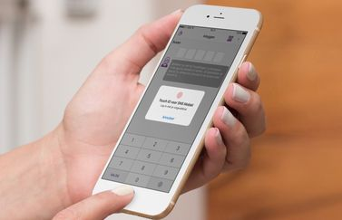 SNS Bank met Touch ID.
